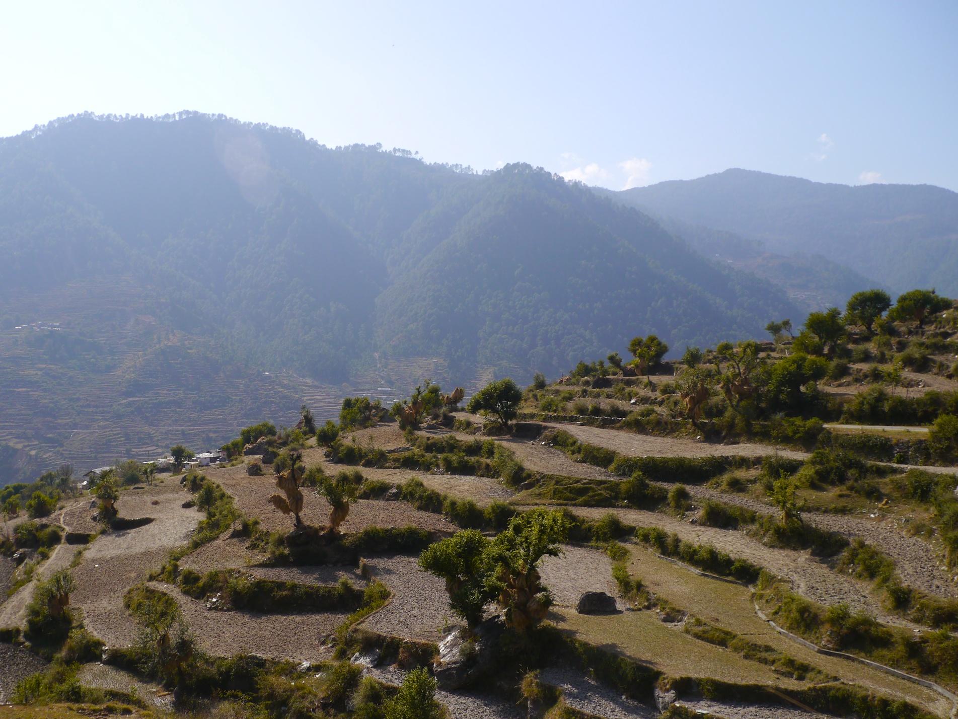 Aztec farming tools http www ehow com info 8742228 terrace farming